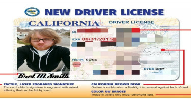 California Driver License Example