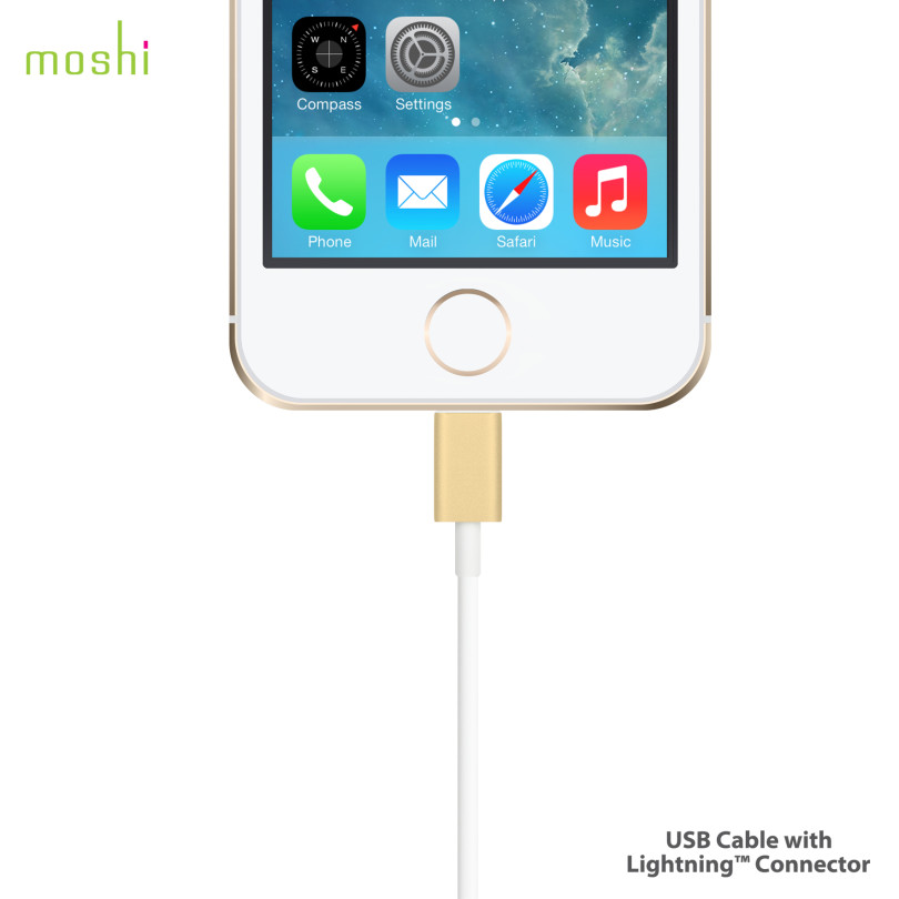 Moshi Lightning Cable 4
