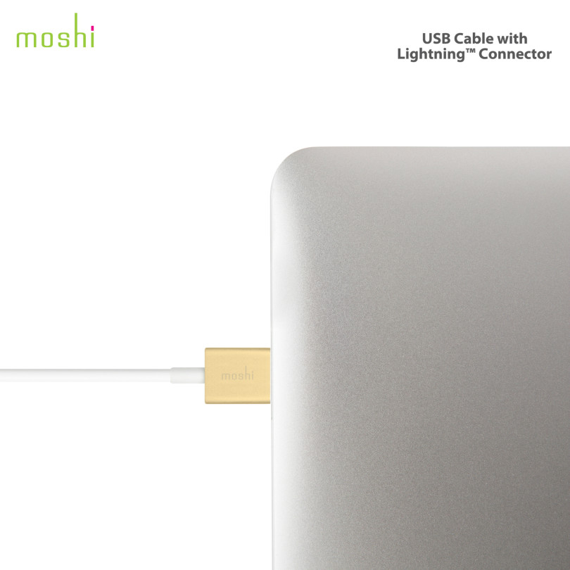 Moshi Lightning Cable 5