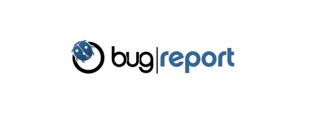 Bug Report Image 1